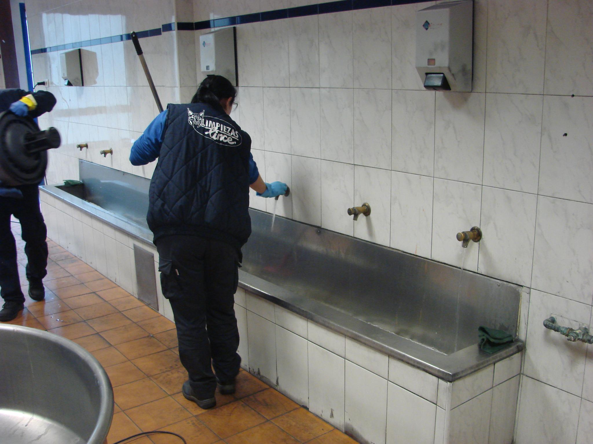 Limpiezas lince empresas de limpieza de cocinas for Empresas de limpieza en castellon